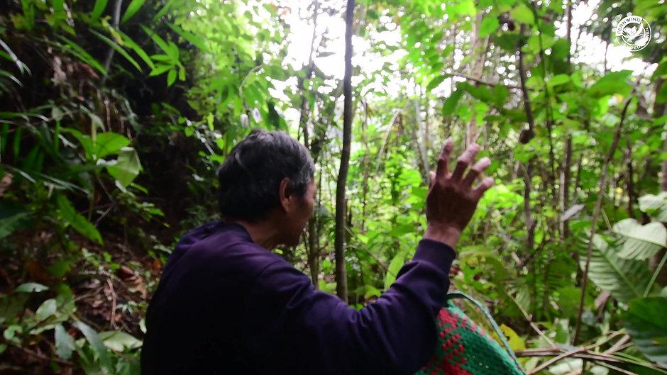 Borneo Expedition