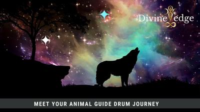 Meet your Animal Guide Drum Journey Meditation Shamanic