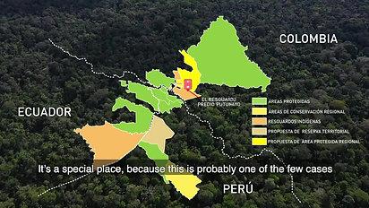 Clave para conservar al jaguar en la Amazonía_ areas protegidas e indígenas