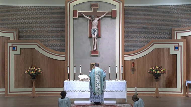 Sunday Mass - 30th Sunday in Ordinary Time