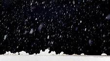 Winter Snow Beast
