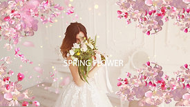 SINGLE SPRING MARRY