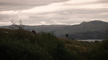 Ardnamurchan - Tasty the Story