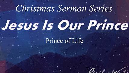 Sunday Dec 2 Jesus Prince of Life