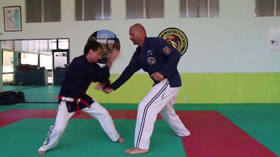 VIDEO WORLD JU JITSU FEDERATION PMA ITALIA
