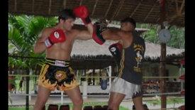 ALEX REID - MMA/Muay Thai & Kick Boxing Champion