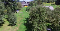 Late Summer Garden View