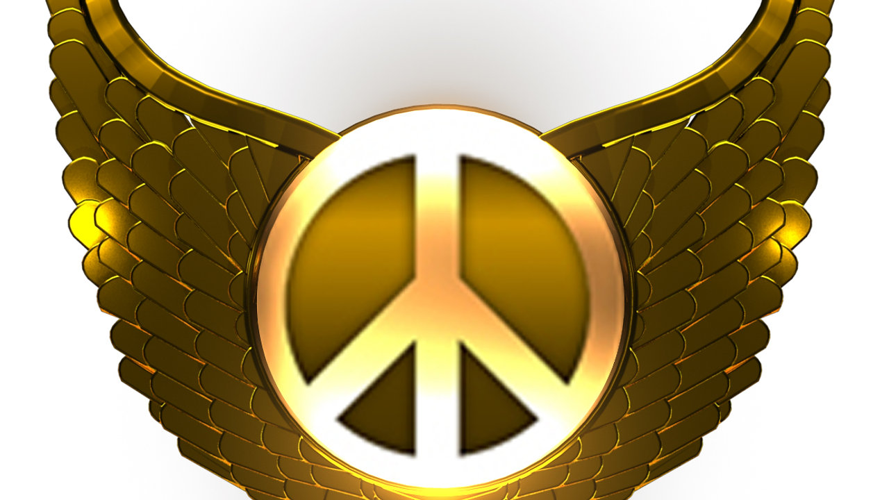 Magnify Peace Videos