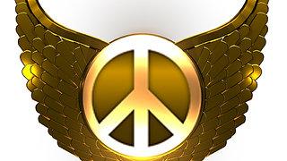 Magnify Peace Videos