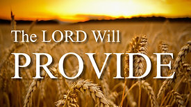 The Lord Will Provide