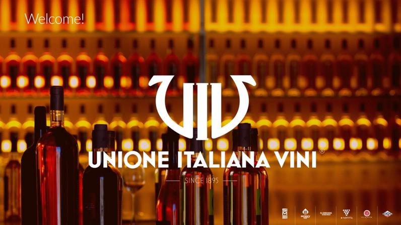 Unione Italiana Vini - Company Keynote