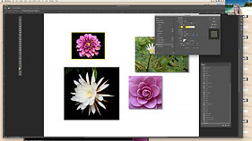5 Cool Things Everyone Should know how to do in Photoshop