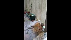 Agua percus