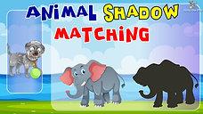 Animal Shadow Matching