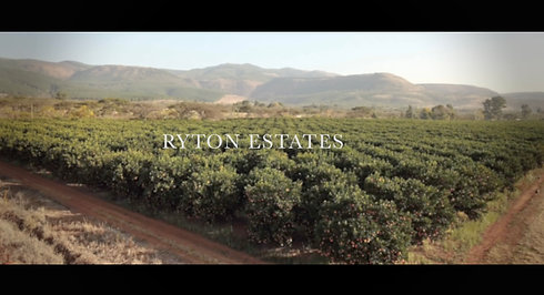 Ryton Estates