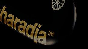 The Indian Maharadja Gold