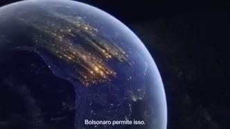 Amazon or Bolsonaro?