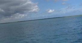 El Cielo Reef Snorkel Boat Trip Cozumel