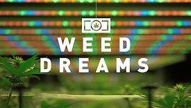 Weed Dreams - Work-In-Progress Trailer