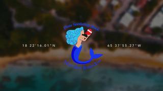 PirateSnorkelingShack -Your Next Adventure