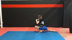 Lesson 2: Double Leg Shot