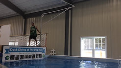 Dock Diving Finn practicing extreme veriticalV Rig)