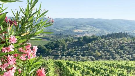 Villa Ref. 163 Panzano in Chianti (Toskana) Video 3