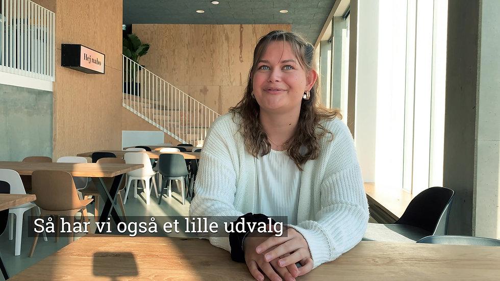 Kollegie Tutor Interview Part 2
