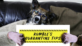 Rumble's Quarantine Tips