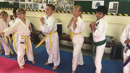karate trailer