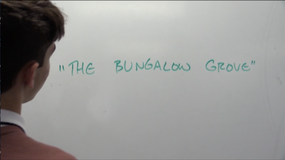The Bungalow Grove