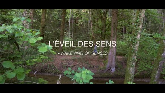 Awakening of senses