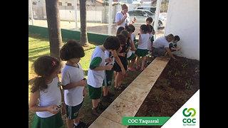 COC Taquaral