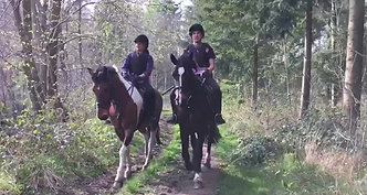 Local Riding