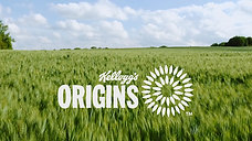 ORIGINS TT VIDEO AUGUST 2016  SHORTENED VERSION MP4