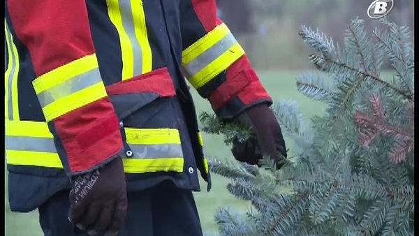 Tannenbaumverbrennen 2018