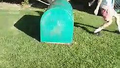 Kong Vault with split feet landing