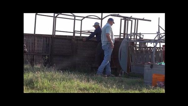 Roos Ranch, Roff Oklahoma