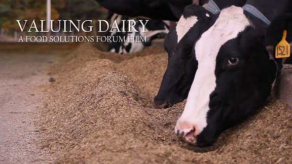 Valuing Dairy