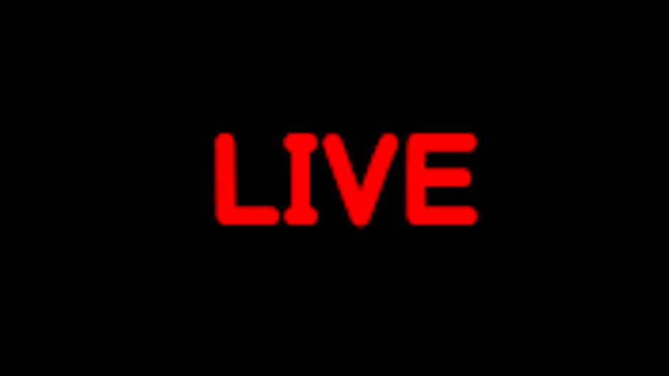 The Palmer Studio Live