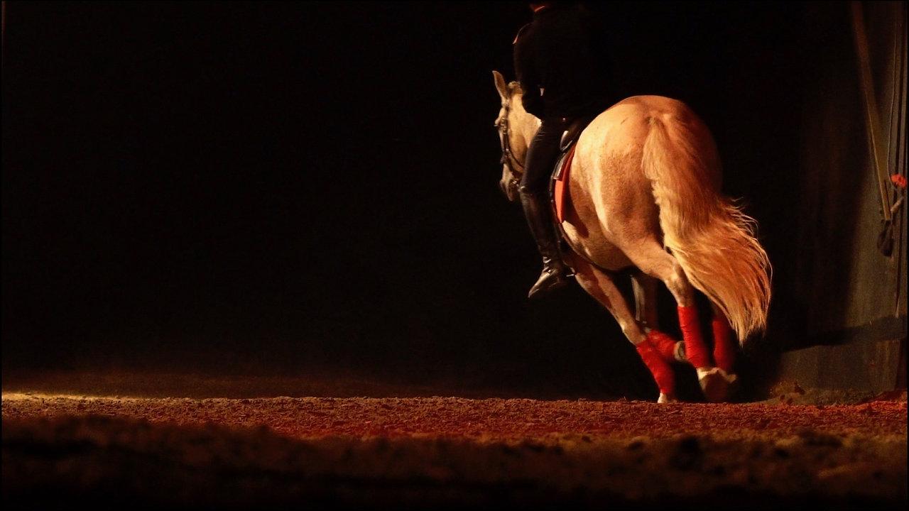 Equus Arte - La Gacilly