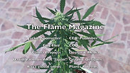 The Flame Magazine