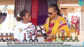Entretien au Village économique et touristique du Mois de l'Histoire des Noirs au Bénin