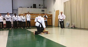 Andri Alekou WSK Kung Fu
