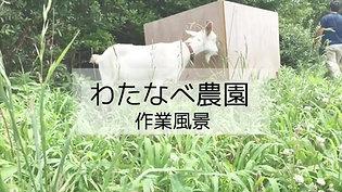 紹介動画 ショートバージョン(01:28)