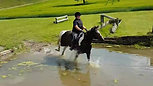 Angela Duff - first time cantering through water