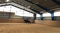 Galopp träning 5-g häst med mkt pass