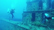 Haliburton Wreck Dive- Utila, Honduras