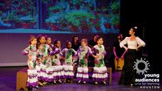 Learn to Dance Flamenco