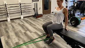 Seated Banded Leg Curl
